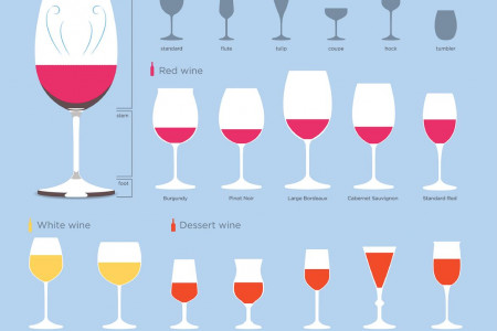Types of Wine Glasses Infographic