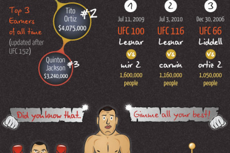 UFC History Infographic