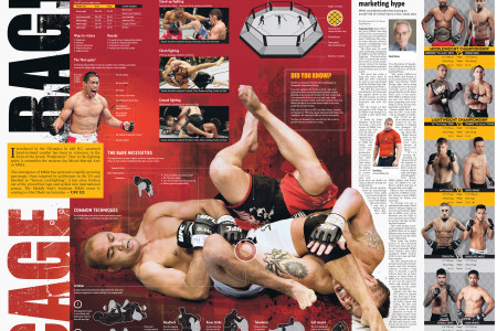 UFC in Abu Dhabi 2010 Infographic