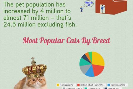 UK Household Pets: All You Need To Know! Infographic
