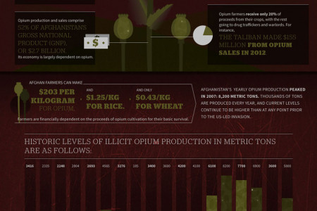Uncovering the Afghan Opium Scourge Infographic