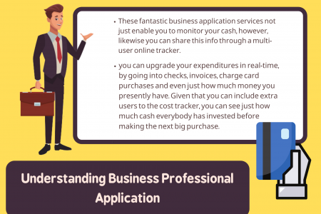 Understanding Business Professional Application Infographic