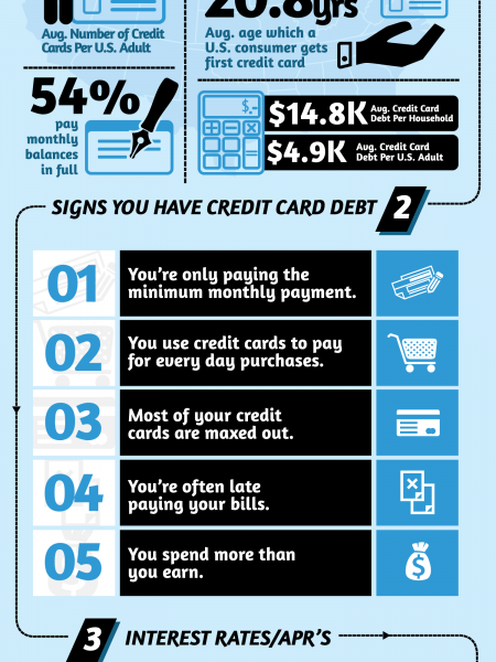 How Many Credit Cards do you Own? Infographic