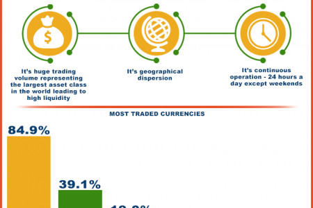 Understanding Forex Trading Basics  Infographic