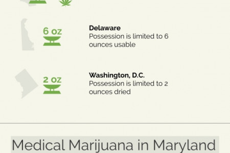 Understanding Maryland's Medical Marijuana Regulations Infographic