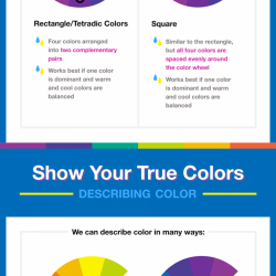 Color Basics understanding the basics of color theory | visual.ly
