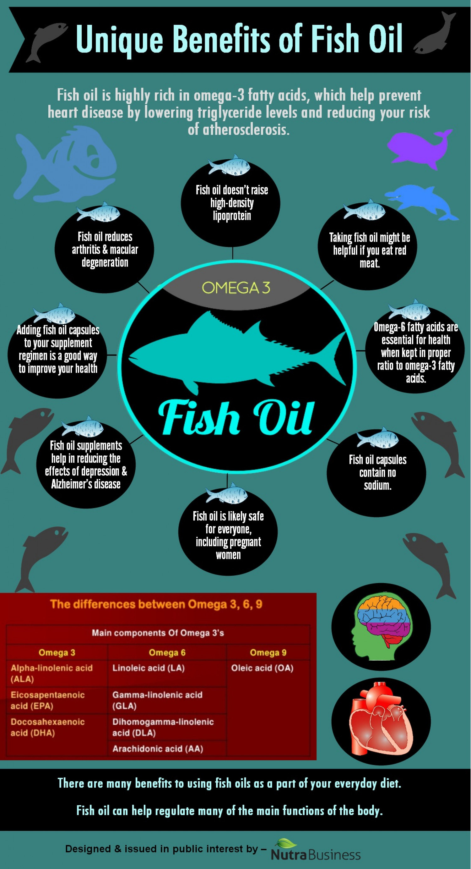 Unique Benefits of Fish Oil Infographic