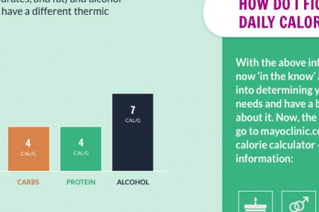 Unscrambling Daily Caloric Needs Infographic