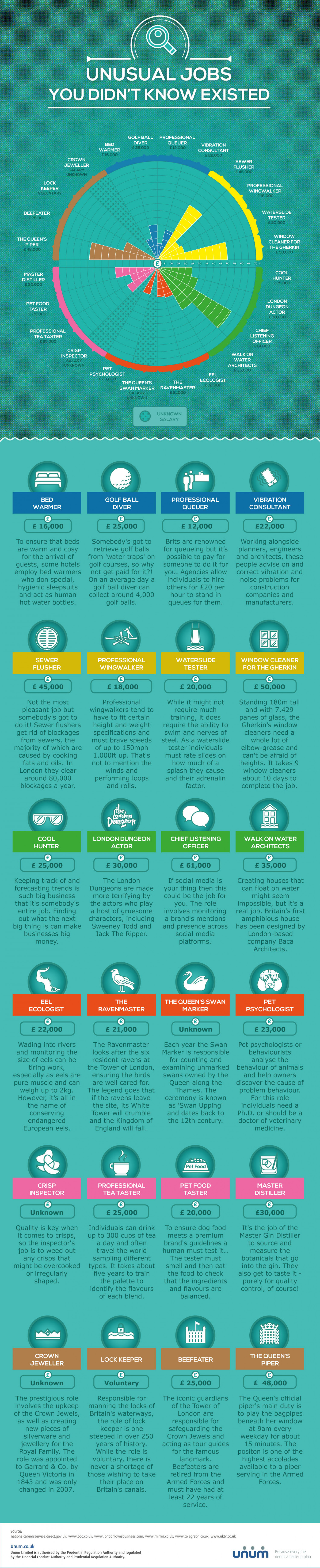 Unusual Jobs You Didn't Know Existed Infographic