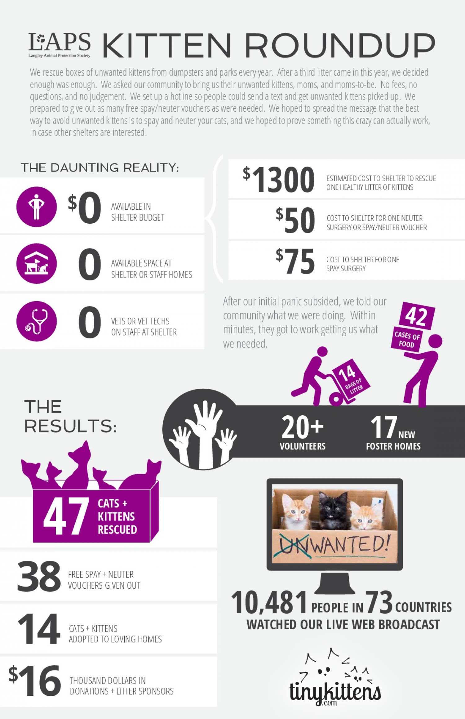 Unwanted Kitten Roundup Infographic