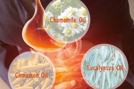 6 Essential Oils for Menstrual Cramps Infographic