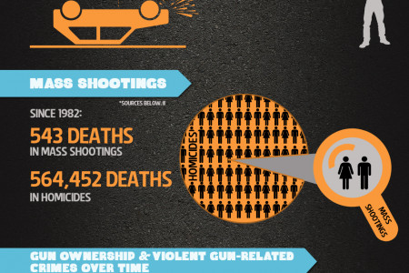 U.S. Gun Usage & Death Statistics Infographic