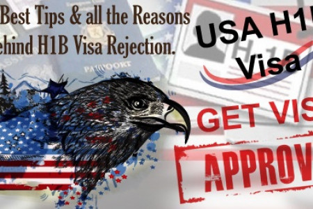 USA H1B Visa rejection help Infographic