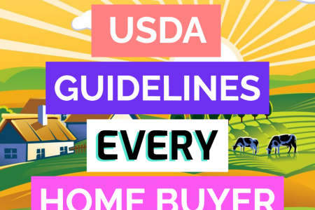 USDA Mortgage Guidelines Infographic