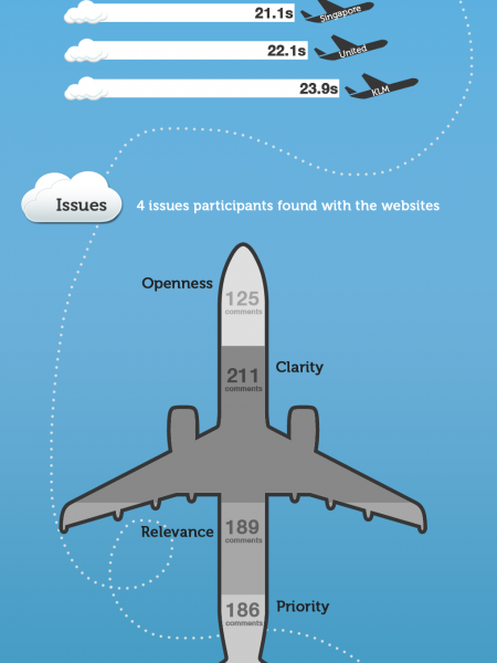 User Experience of Airline Sites Infographic