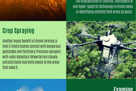 Uses Of Drones In Agriculture Industry Infographic