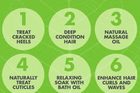 Uses of Moroccan Argan Oil  Infographic