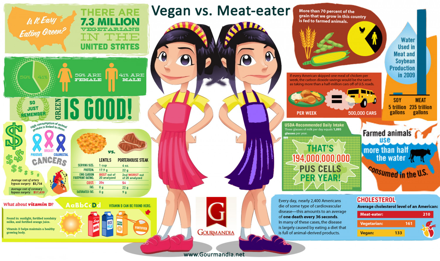 Vegan vs. Meat-Eater Infographic