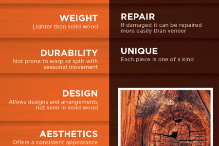 Veneer Vs. Solid Wood  Infographic