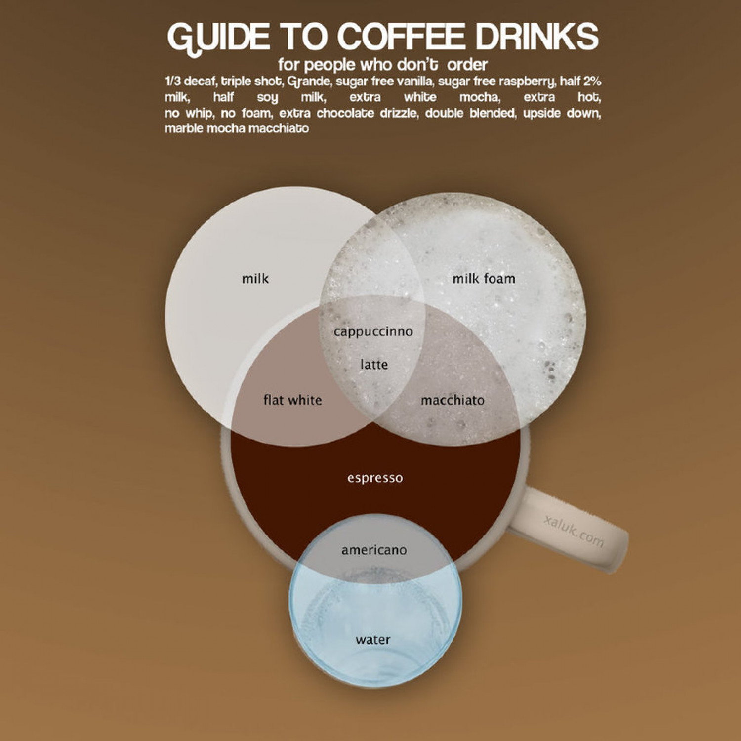 Venn diagram of coffee drinks Infographic