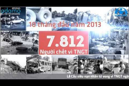 Vietnam traffic accident  in 2013  Infographic