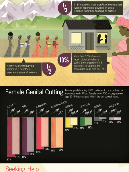 Violence in Women's Lives Infographic