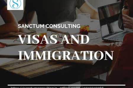 Visa and Immigration Services Infographic