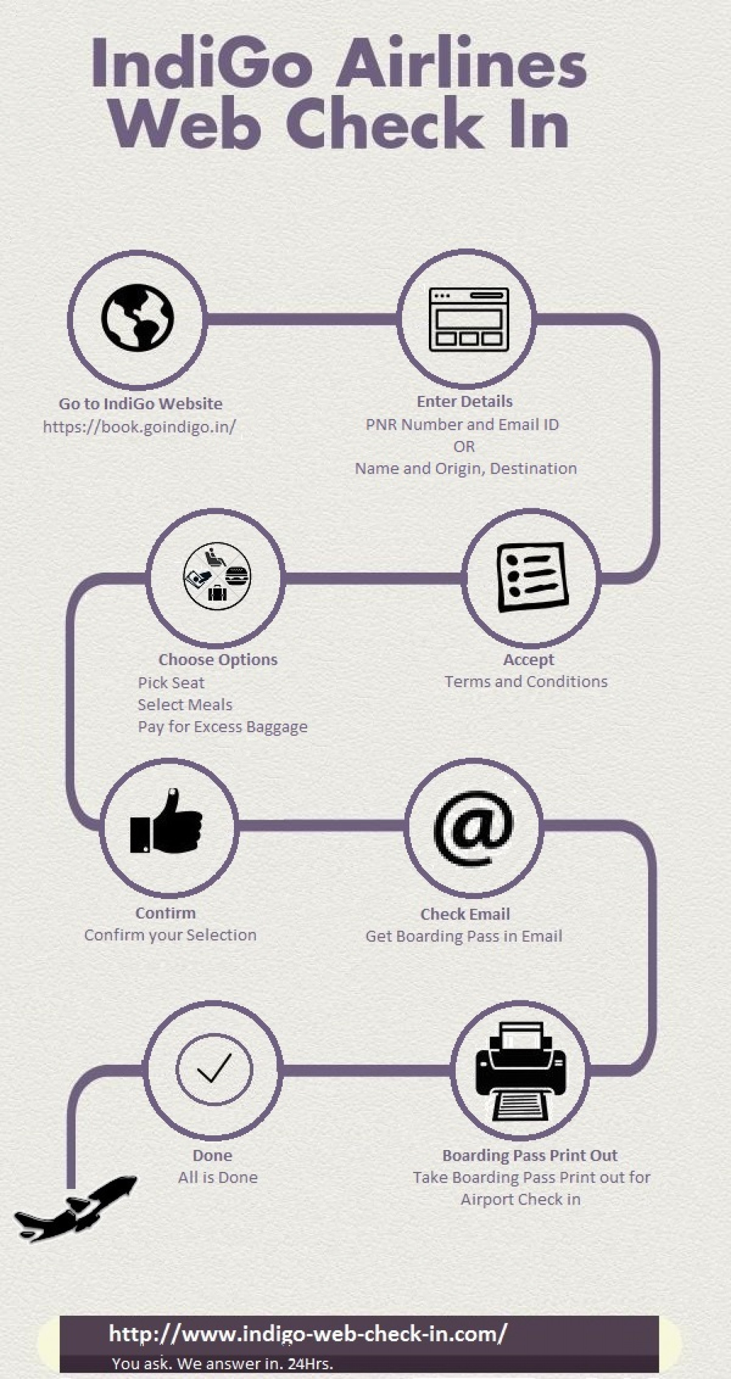 Visual Representation of Indigo Web Check in Process Online Infographic