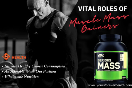 Vital Role Of Muscle Mass Gainer Infographic
