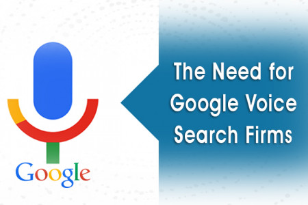 Voice Search Optimization Services Infographic