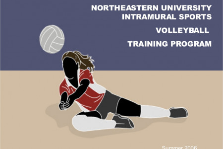 Volleyball Facts Infographic