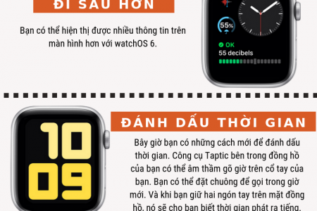 watchOS 6 Infographic Special Infographic