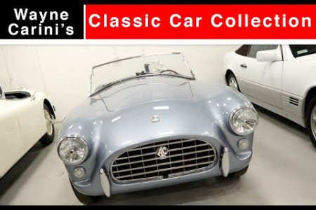 Wayne Carini's Classic Car Collection Infographic