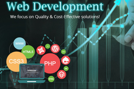 We Development | Innovegic Solutions Infographic