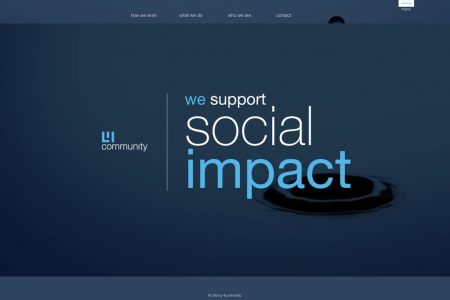 We Support Social Impact Infographic