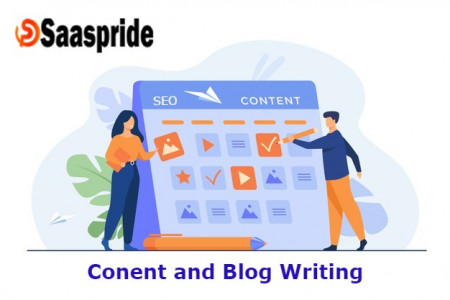 We Write Seo Friendly Content and Blog Posts for different websites Infographic