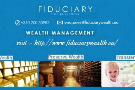 Wealth Management Infographic