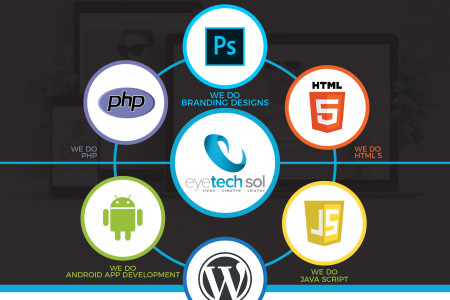 Web and App Develp\opment Services Infographic