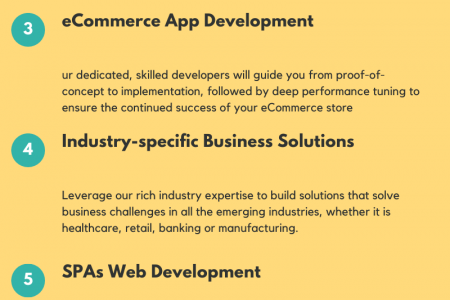 Web Application Design & Development Company in NYC & NJ, USA Infographic