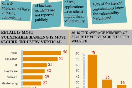 Web Application Vulnerability Statistics  Infographic