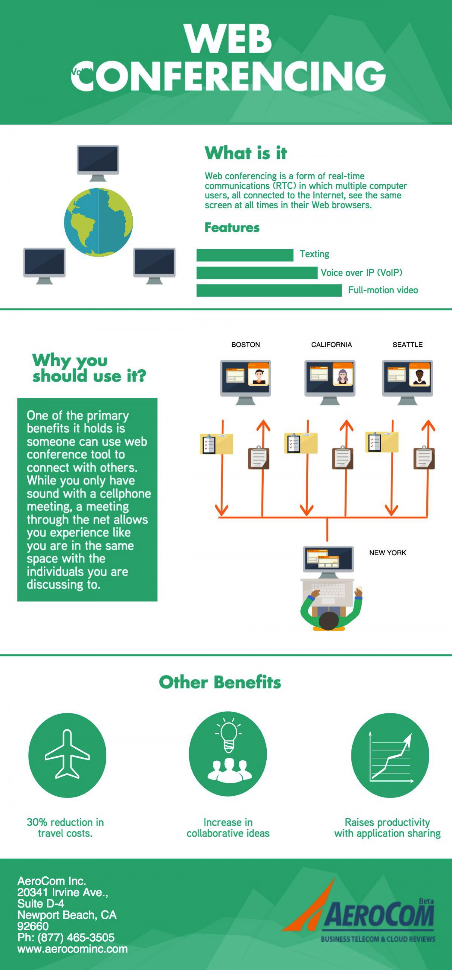 Web Conferencing Infographic