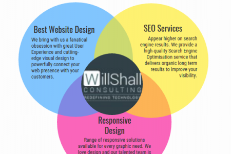 Web Design Company Infographic