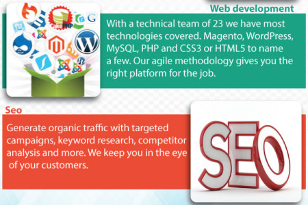 Web Design Services Birmingham Infographic