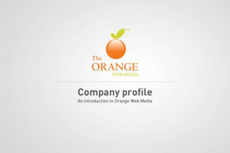 Web Designing & Web Development in Pune - Orange Web Media Infographic