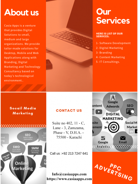 Best Digital Marketing Agency & Custom Software Development Company Infographic