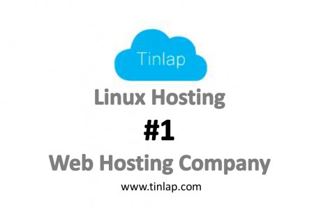 Web Hosting by Tinlap Web Hosting: Web Sites, Domain Registration, WordPress, Ruby on Rails, all on Debian Linux! Infographic