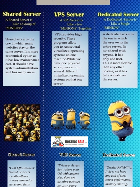 Web Hosting Server Comparison Infographic Infographic