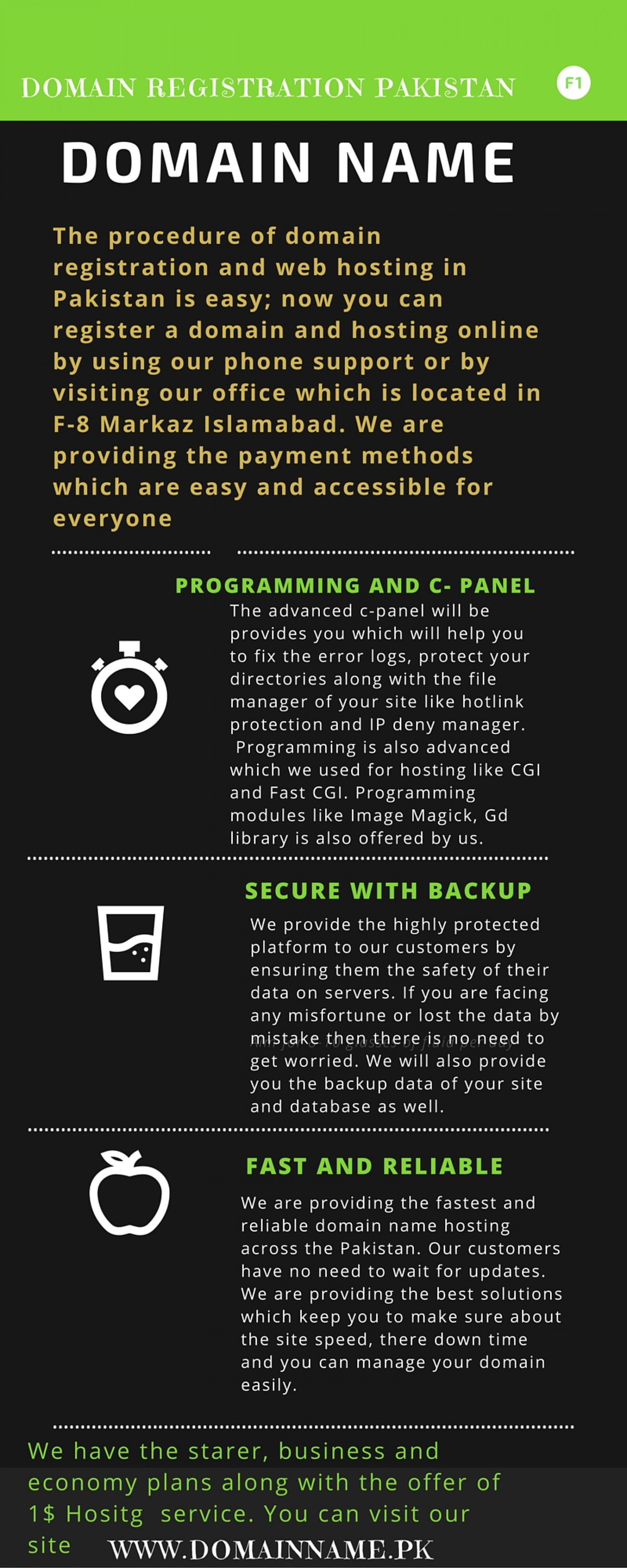 Web Hosting Services in Pakistan Infographic