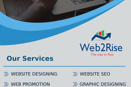 Web2Rise | Best Webite Designing Company in Delhi NCR Infographic