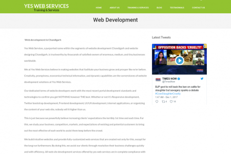 web development in chandigarh Infographic